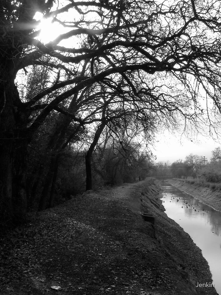 Redding Canal by Jenkin