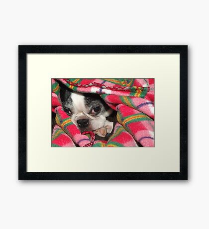 Please Wake Me When It's Spring Framed Print