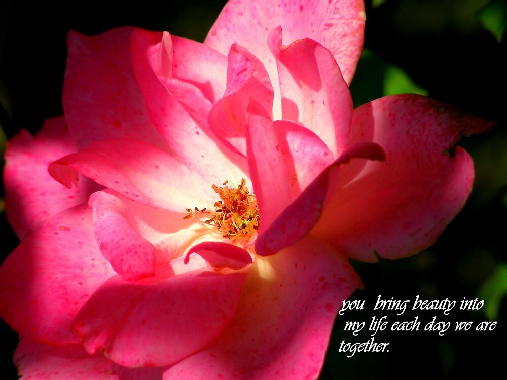 Love and Appreciation by Cricket Jones