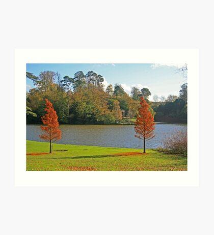 Bowood Lake Art Print