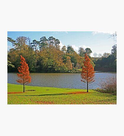 Bowood Lake Photographic Print