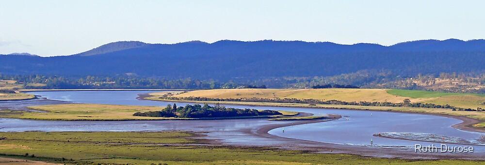 Tamar Island Wetlands - Tamar Valley, Tasmania by Ruth Durose