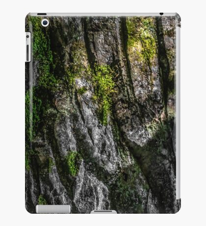 SURFACE [iPad cases/skins] iPad Case/Skin