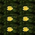 Yellow Flora by qbranchltd