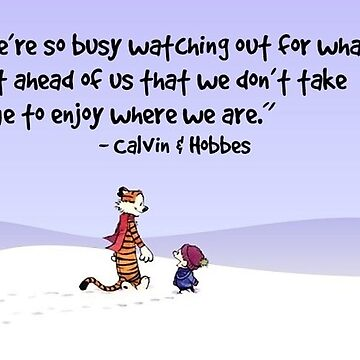 Calvin and Hobbes Quote by Ruby5732