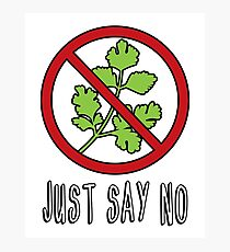 Say No to Cilantro Photographic Print
