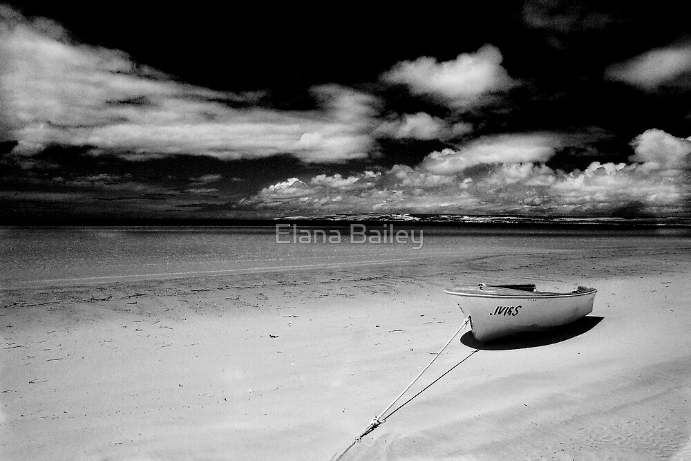 Island Beach in monochrome by Elana Bailey