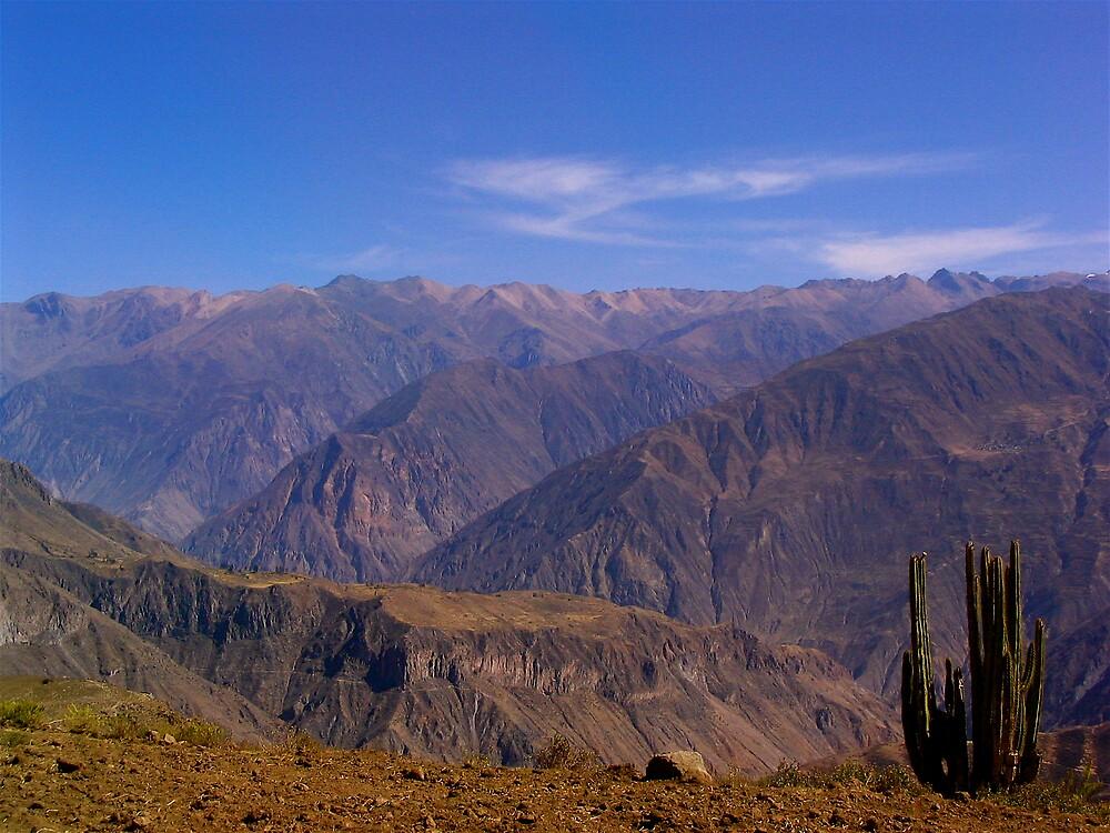 Peruvian Highlands by C1oud