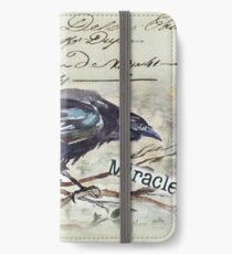 Country Diary - First, Do no harm - Primum non nocere iPhone Wallet/Case/Skin