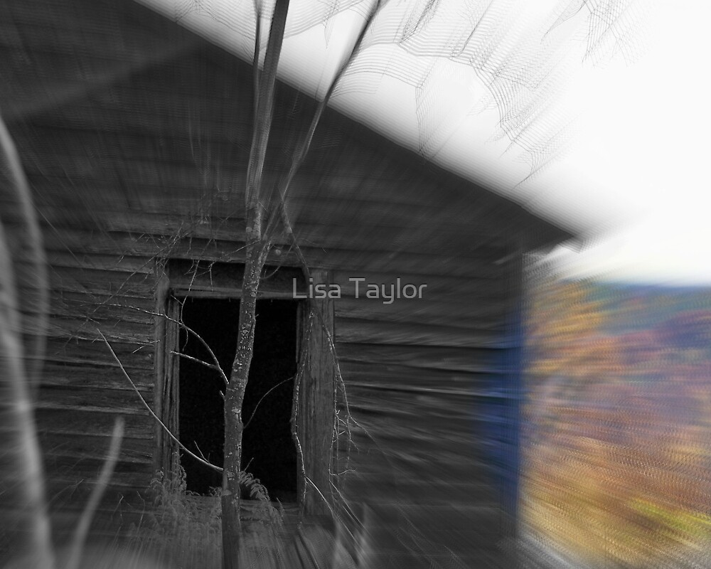 Window to the Past by Lisa Taylor