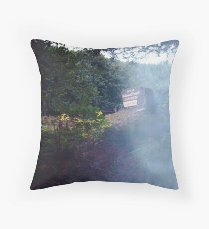 something showed up in photo? Throw Pillow
