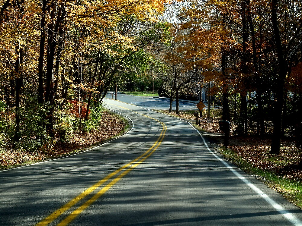 """Fall Colors """"The Road"""" by Mandy Keller"""