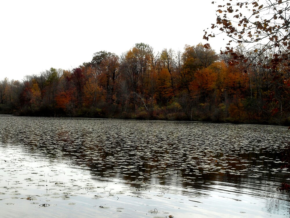 "Fall Colors ""At the lake"" by Mandy Keller"
