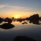 Humboldt Sunset  by Clancey Meyer-Gilbride