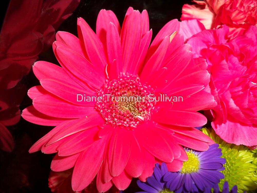 Vibrant Red Flower by Diane Trummer Sullivan