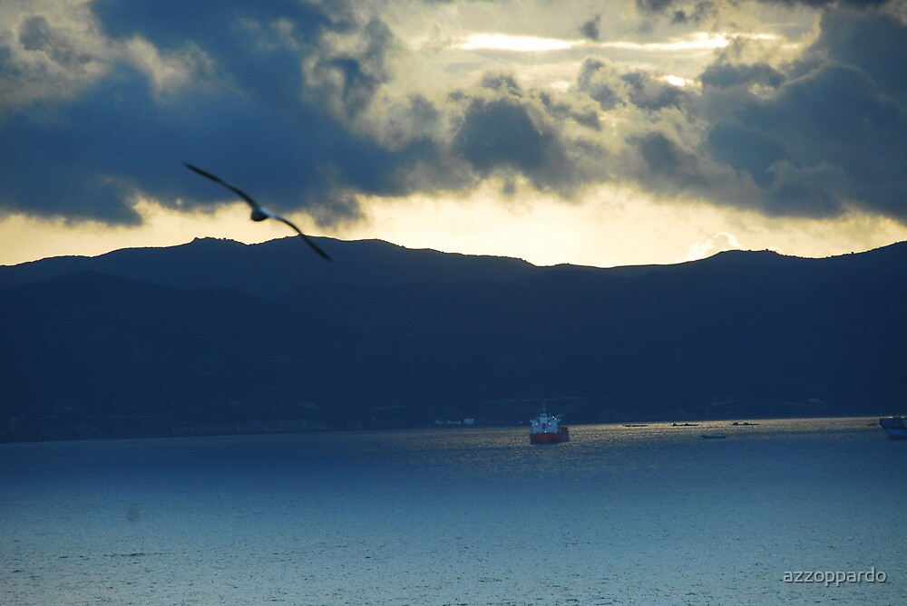 seagull over bay of gibraltar  by azzoppardo