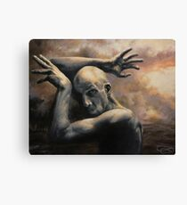Sky is Falling Canvas Print