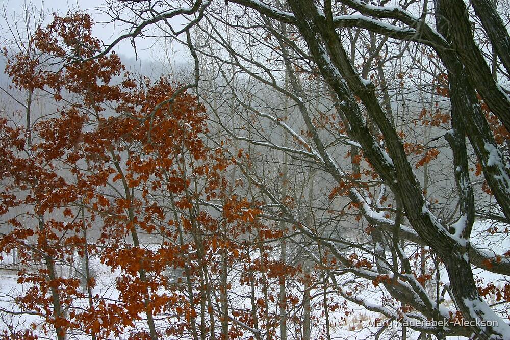 Backyard fog by Mary Kaderabek-Aleckson