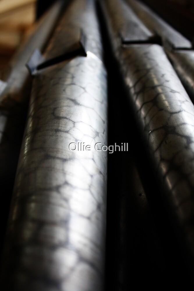 Organs by Ollie Coghill