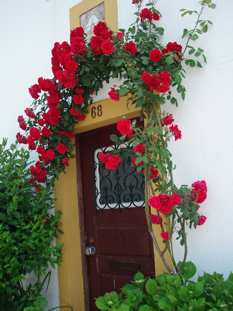 Castelo de Vide - Flowered door by presbi