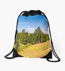 spruce forest on rolling hills in springtime Drawstring Bag