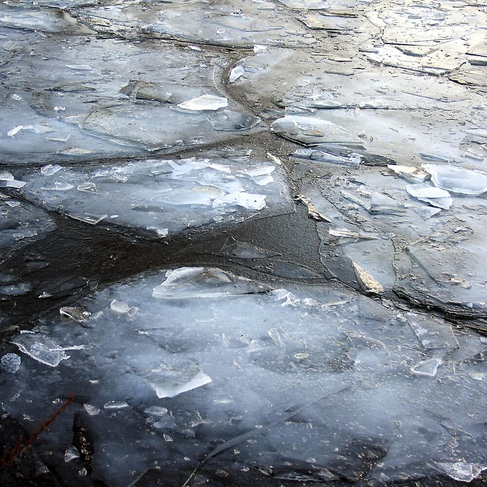 Ice Floes by Ulf Buschmann
