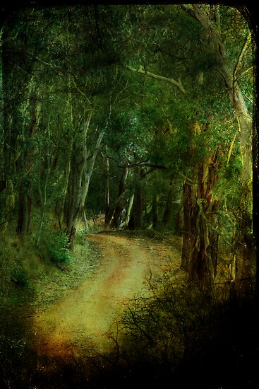 The Road of Neverland by Lorraine Creagh