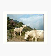 Happily Unburdened, Annapurna Sanctuary Art Print