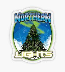 Luces de Northren Pegatina transparente