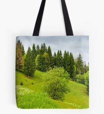 forest on grassy hillside in springtime Tote Bag