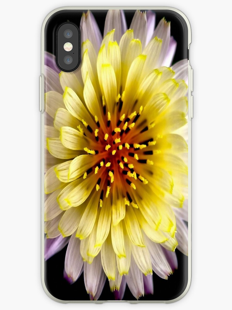 Grace iphone case by Sandra Moore
