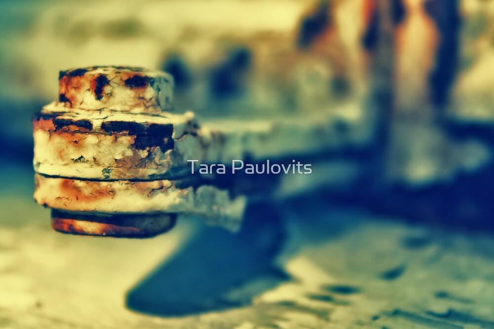 hinged by Tara Paulovits