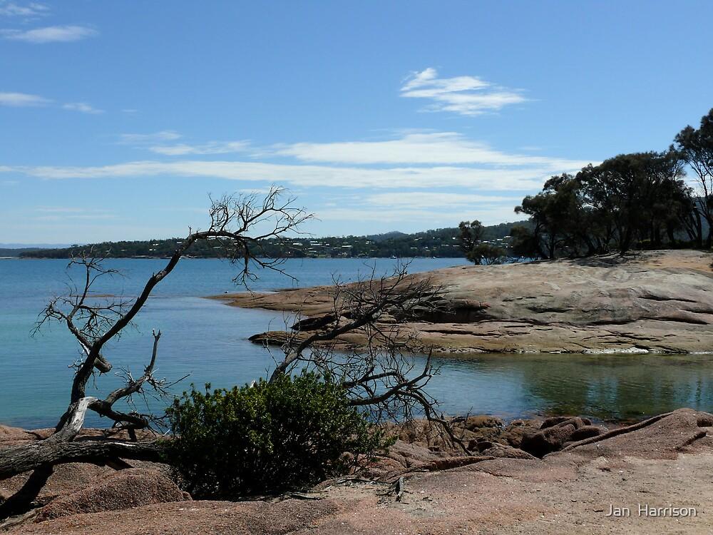 Honeymoon Bay Tasmania by Jeanette Harrison