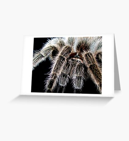 Hairy Greeting Card