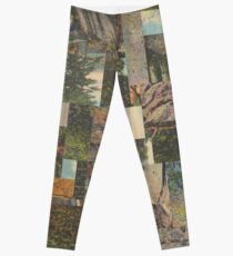 Tree Points Drop Leggings