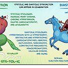 Systolic vs. Diastolic Heart Failure by Medcomic