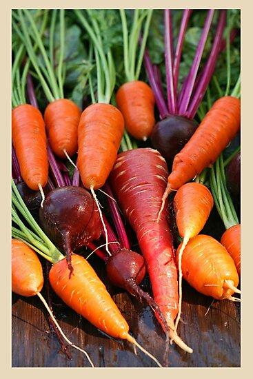 Harvest Organic Vegetables by mistyrose