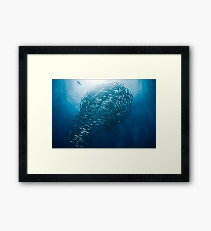Lightbulb schooling fish Framed Print