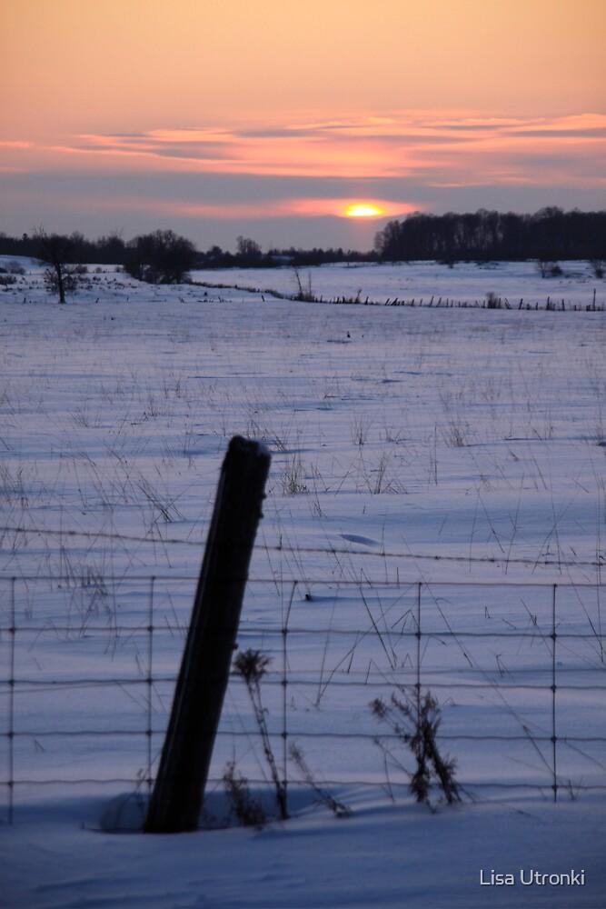 snow sun down by Lisa Utronki