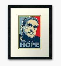 ROBERT MUELLER HOPE Framed Print