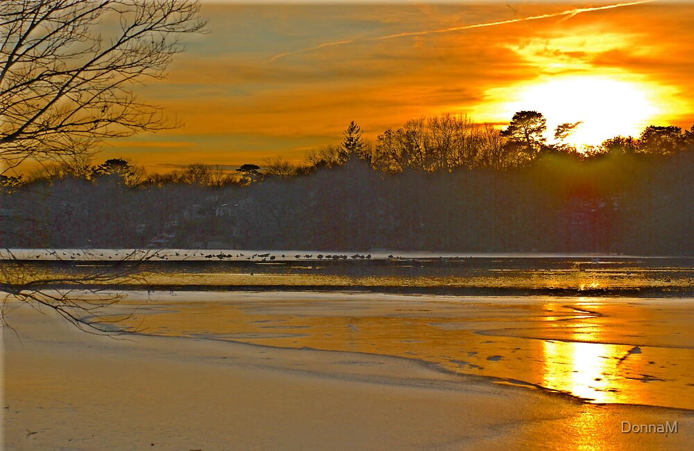 Winter Sunset by DonnaM
