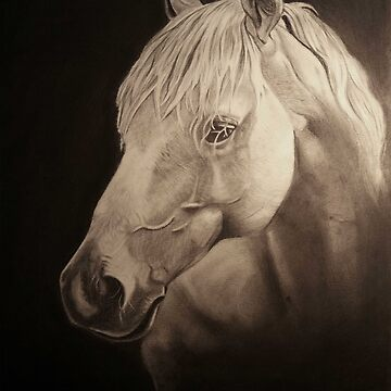 horse drawing  by arty-waaw