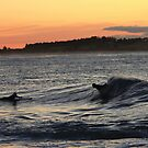 Morning Surf by Em Donaldson