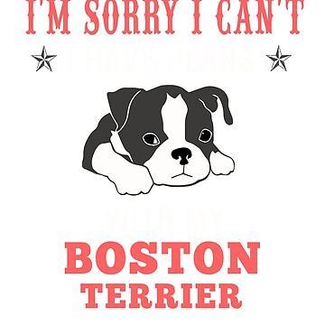 Best Costume For Boston Terrier Lover. Gift For Dad/Mom. by maingocanh