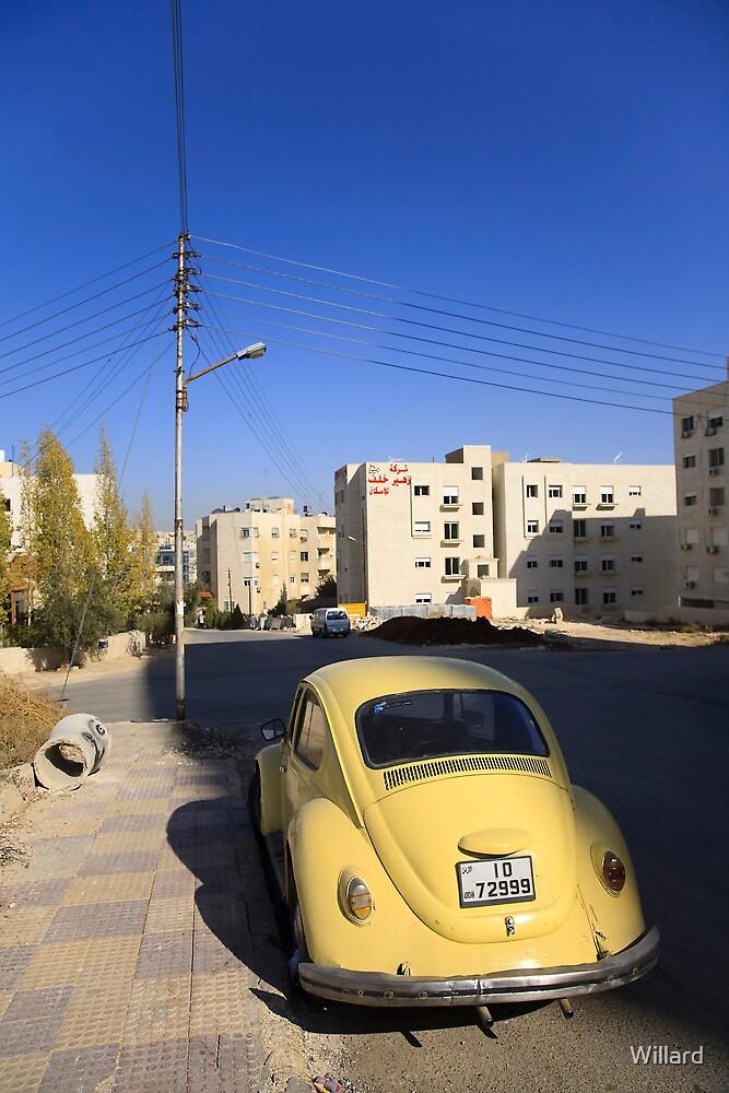 Jordanian Bug by Willard