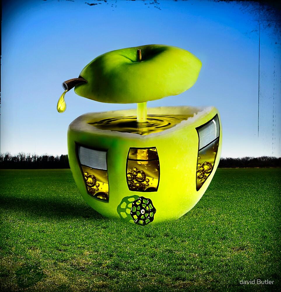 Apple Juicer by david Butler