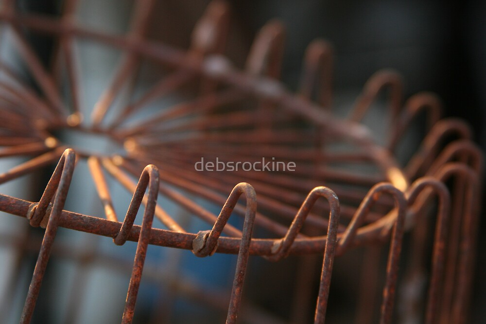 Rusty egg basket by debsrockine