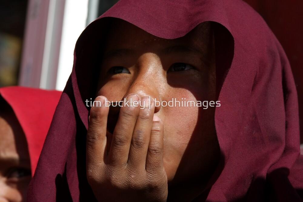 nepali monk. tso pema, north india by tim buckley | bodhiimages