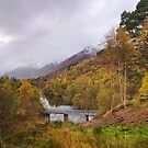 Glen Affric Portrait by kernuak