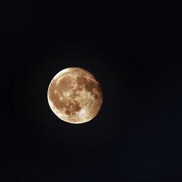 Full moon by 3dgartstudio